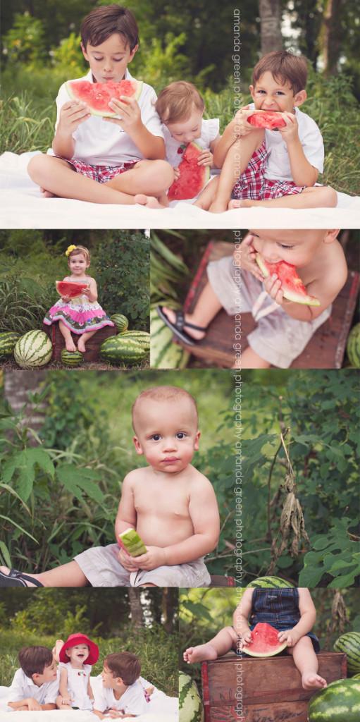 watermelon11