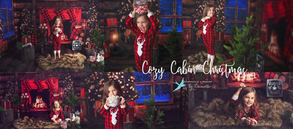 cozy cabin1