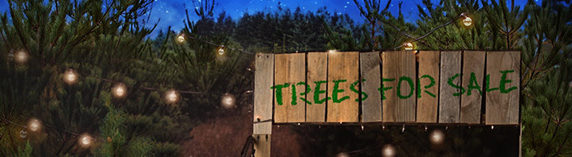 tree farm header